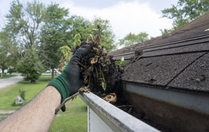 gutter home cleaning roof